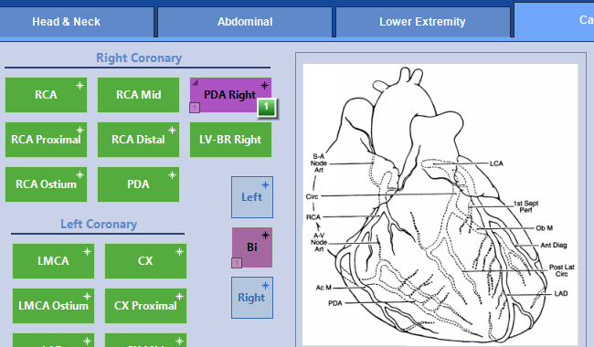 Ehr Software For Cardiology Electronic Health Record